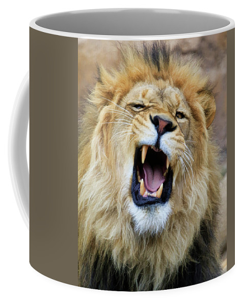 Lion Coffee Mug featuring the photograph Hear Me Roar by Steve McKinzie
