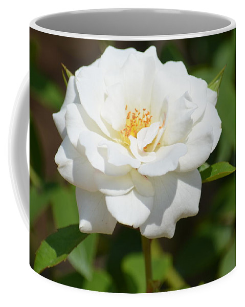Heavenly White Rose Coffee Mug featuring the photograph Heavenly White Rose by Maria Urso