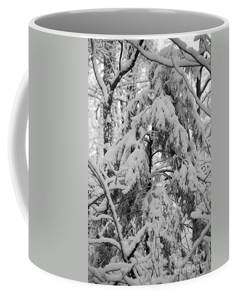 Snow Coffee Mug featuring the photograph Heavy Burden by Eric Liller