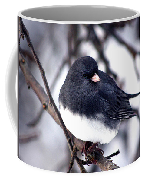 Birds Coffee Mug featuring the photograph Hello... by Arthur Miller