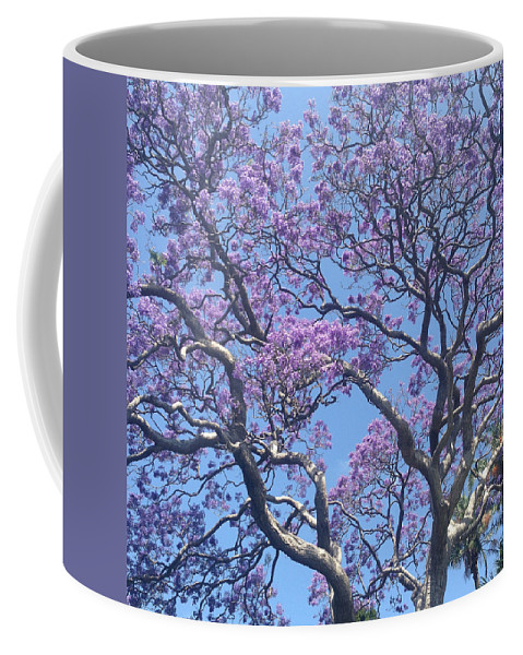 Jacaranda Coffee Mug featuring the photograph Hello Jack by Michelle Ngaire
