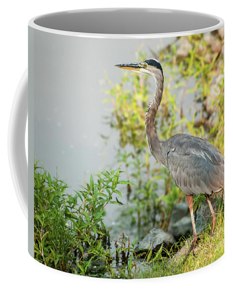 Great Coffee Mug featuring the photograph Henry The Great Blue Heron by Cathie Moog