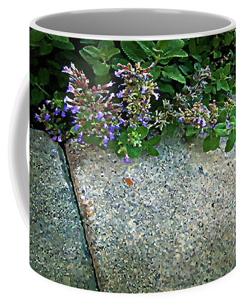 Flowers Coffee Mug featuring the painting Herb Garden Walkway by RC DeWinter