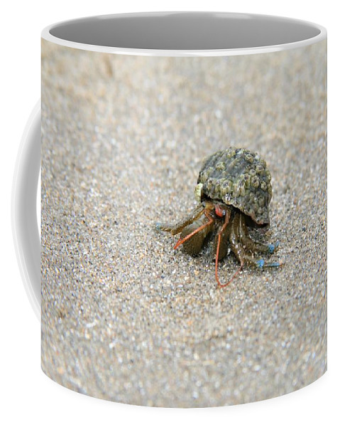 Crab Coffee Mug featuring the photograph Herman The Hermit by Glenn Wachtman