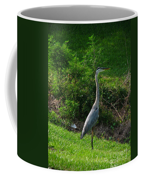 Patzer Coffee Mug featuring the photograph Heron Blue by Greg Patzer