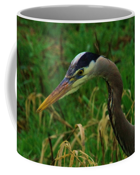Heron Coffee Mug featuring the photograph Heron Stare Down by Jeff Swan