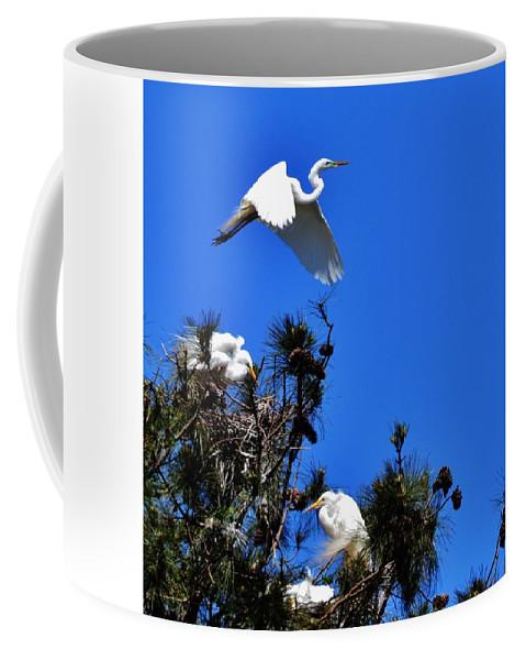 Herons Coffee Mug featuring the photograph Heron Trio by Eileen Brymer