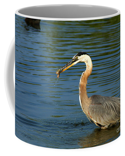 Clay Coffee Mug featuring the photograph Herons Catch by Clayton Bruster