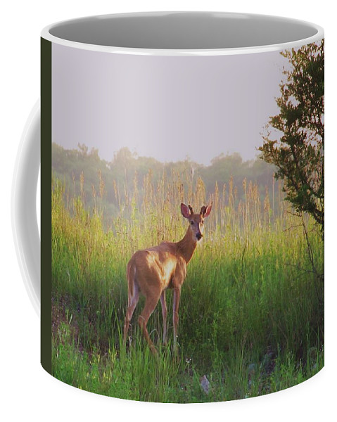 Deer Photograph Coffee Mug featuring the photograph Hesitation by Marilyn Smith