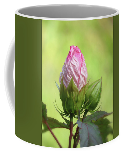 Hibiscus Coffee Mug featuring the photograph Hibiscus Bud Beauty by MTBobbins Photography
