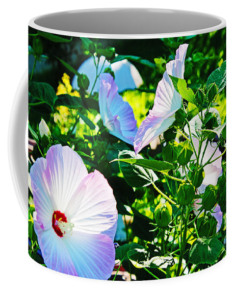 Nature Coffee Mug featuring the photograph Hibiscus Garden by Don Baker
