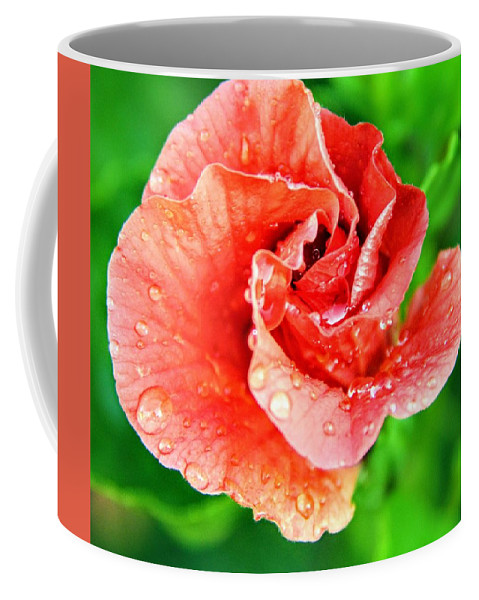 Flower Coffee Mug featuring the photograph Hibiscus by Karen Scott
