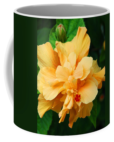 Hibiscus Coffee Mug featuring the photograph Hibiscus by Susanne Van Hulst