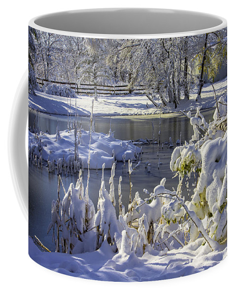 Coffee Mug featuring the photograph Hickory Nut Grove Landscape by Raymond Kunst
