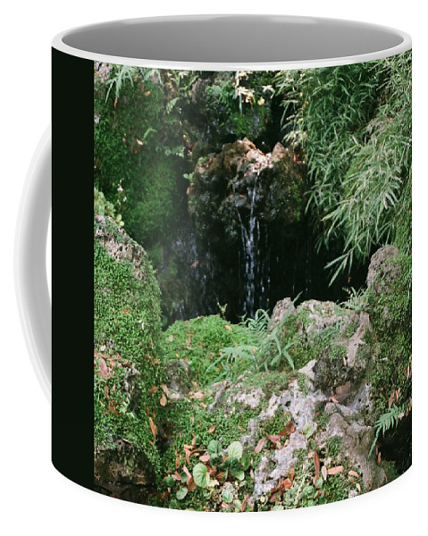 Nature Coffee Mug featuring the photograph Hidden Waterfall by Dean Triolo