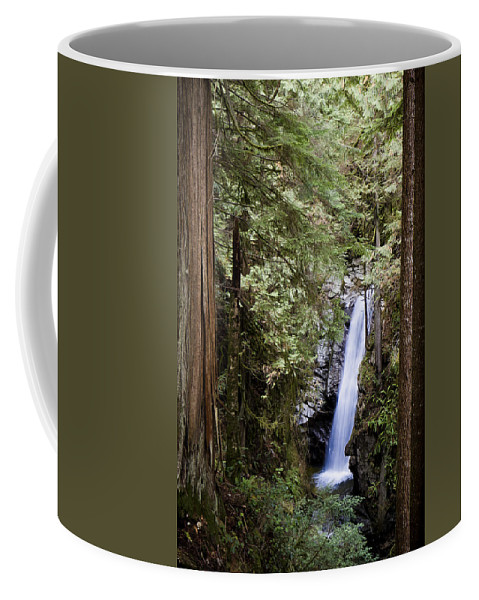 Canada Coffee Mug featuring the photograph Hidden Within A Forest by Windy Corduroy