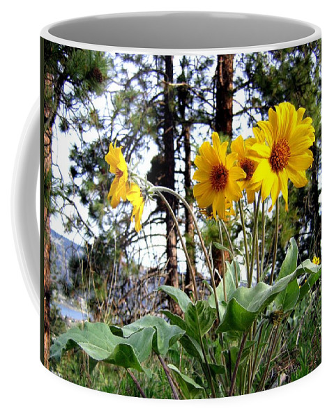 Sunflowers Coffee Mug featuring the photograph High In The Hills by Will Borden