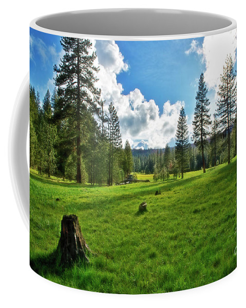 Mountain Meadow Coffee Mug featuring the photograph High Meadow by David Arment
