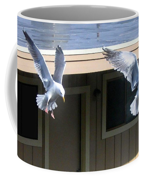 Seagulls Coffee Mug featuring the photograph High Spirits by Will Borden
