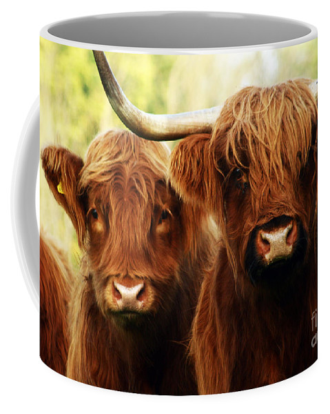 Cow Coffee Mug featuring the photograph Highland Cows by Angel Ciesniarska