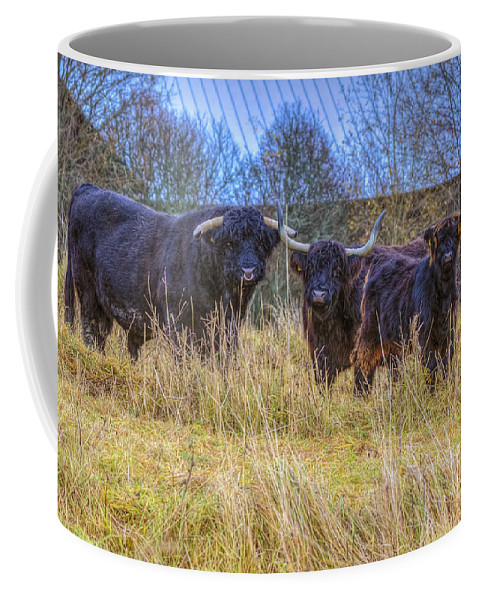 Atmosphere Coffee Mug featuring the photograph Highland Family by Veikko Suikkanen