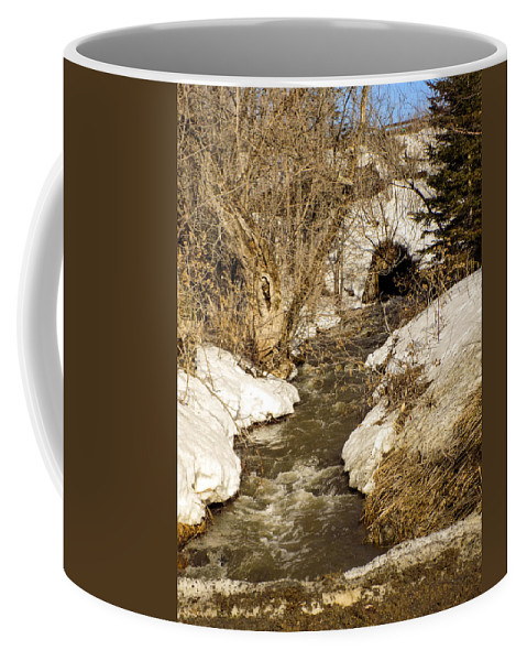 Spring Coffee Mug featuring the photograph Hill Drain 2 by William Tasker