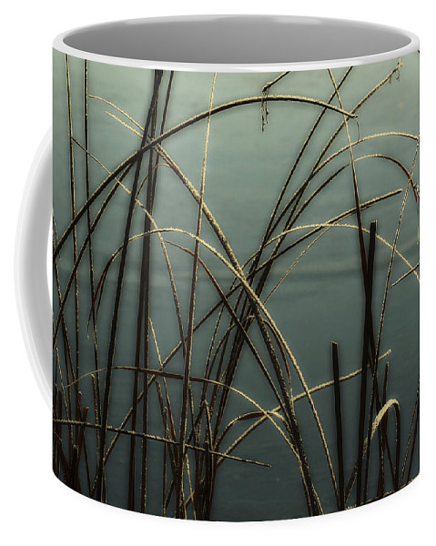 Hoar Frost Coffee Mug featuring the photograph Hoar Frost On Pond 1 by Marilyn Hunt