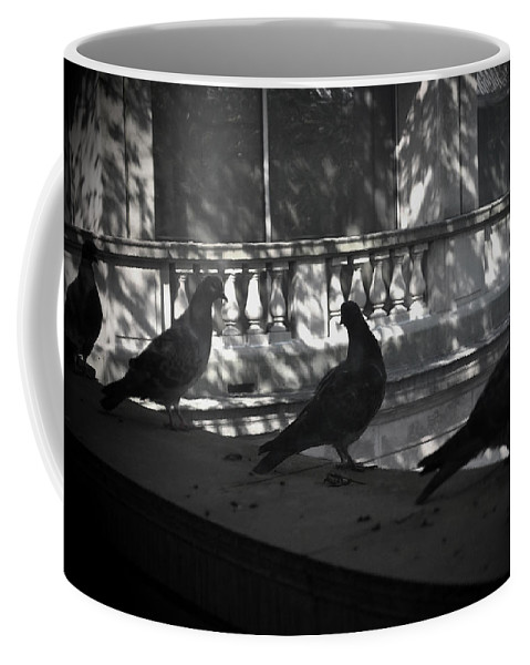 Birds Coffee Mug featuring the photograph Holding Court by Tim Nyberg