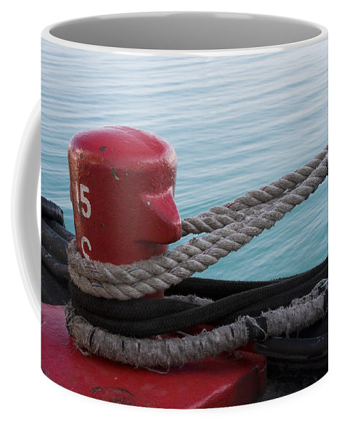 Chicago Windy City Navy Pier Lake Michigan Water Red Blue Wave Rope Ship Boat Coffee Mug featuring the photograph Holding Tight by Andrei Shliakhau