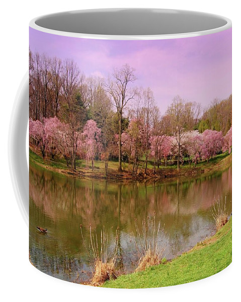 Cherry Blossom Coffee Mug featuring the photograph Holmdel Park In Spring by Angie Tirado