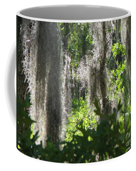 Florida Coffee Mug featuring the photograph Home by Greg Patzer