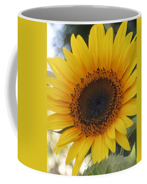 Sunflower Coffee Mug featuring the photograph Homegrown Sunflower by Melanie Rainey