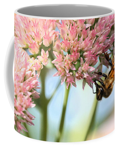 Bee Coffee Mug featuring the photograph Honey Bee 2 by Angela Rath