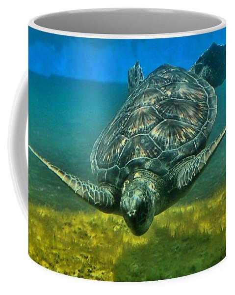 Turtle Coffee Mug featuring the photograph Honu by DJ Florek