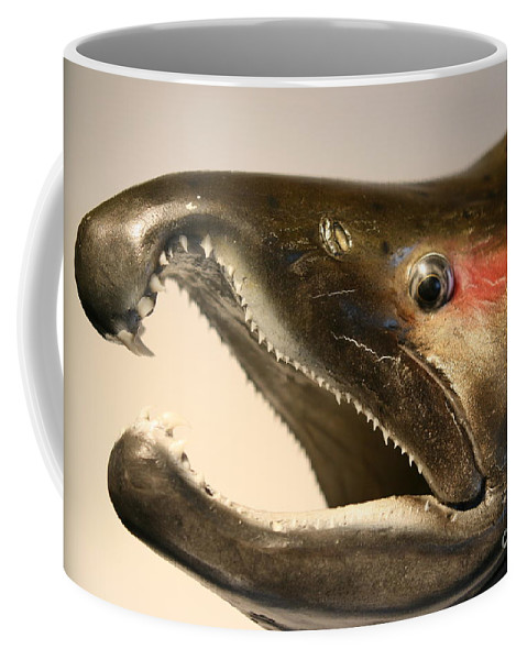 Salmon Coffee Mug featuring the photograph Hooked by Rick Monyahan