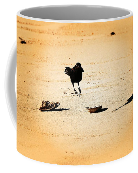 Jersey Shore Coffee Mug featuring the photograph Hop Like A Bunny Bird - Jersey Shore by Angie Tirado