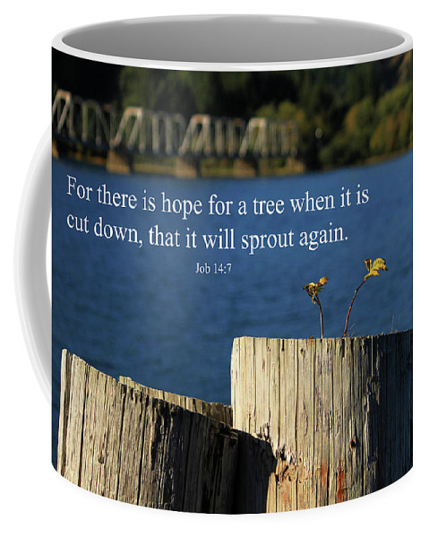 Inspirational Coffee Mug featuring the photograph Hope For A Tree by James Eddy