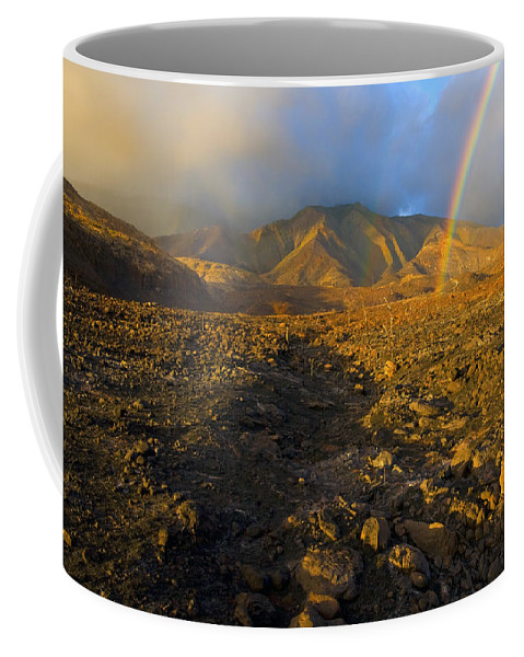 Rainbow Coffee Mug featuring the photograph Hope From Desolation by Mike Dawson