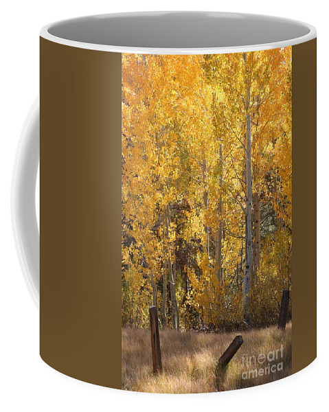 Hope Valley Coffee Mug featuring the photograph Hope Valley California by Melanie Rainey