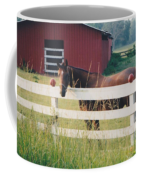 Landscape Coffee Mug featuring the photograph Horse And The Barn by Michelle Powell