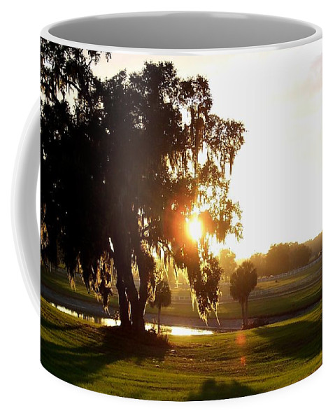 Sunset Coffee Mug featuring the photograph Horse Country Sunset by Kristen Wesch