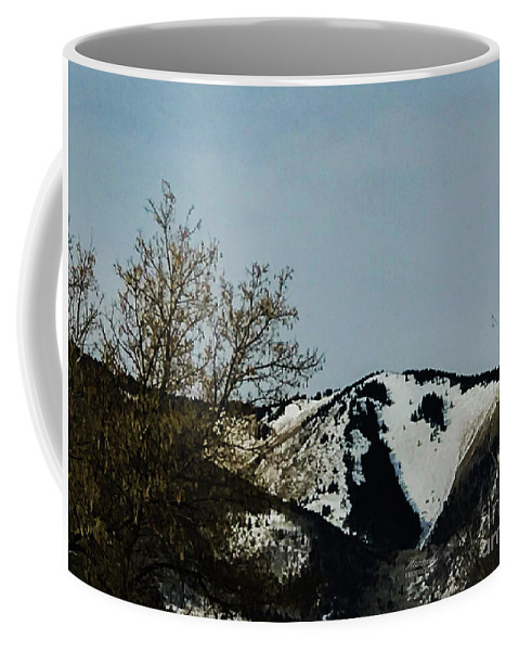 Horse Head Coffee Mug featuring the photograph Horse Head In The Winter by Stacy Hannahs