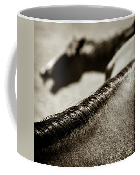 Horses Coffee Mug featuring the photograph Horse Play by Dave Bowman
