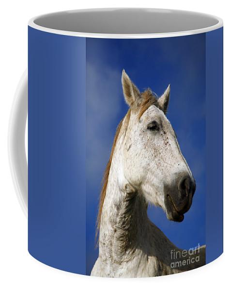 Animals Coffee Mug featuring the photograph Horse Portrait by Gaspar Avila