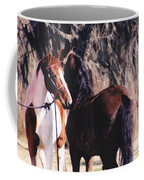 Horses Coffee Mug featuring the photograph Horse Talk by Michelle Powell