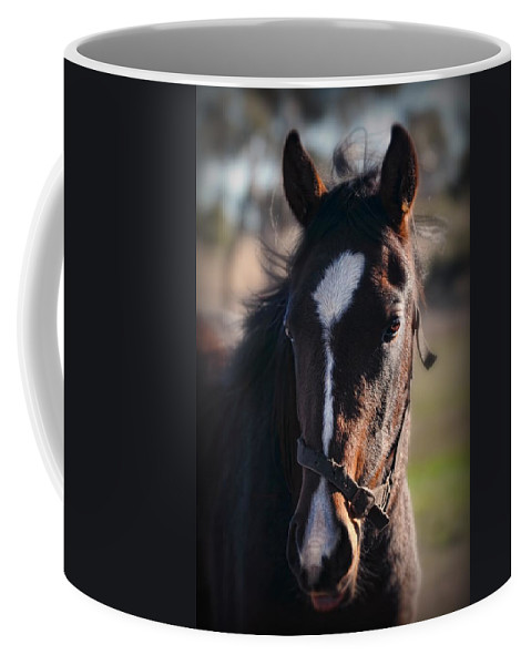 Horse Coffee Mug featuring the photograph Horse Whispering by Georgiana Romanovna