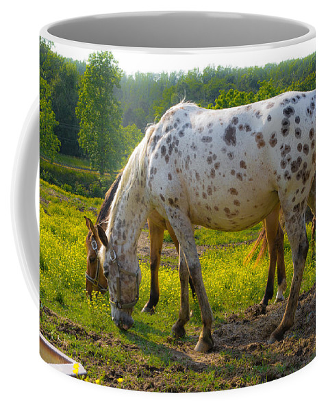 County Coffee Mug featuring the photograph Horses And Buttercups by Lori Coleman