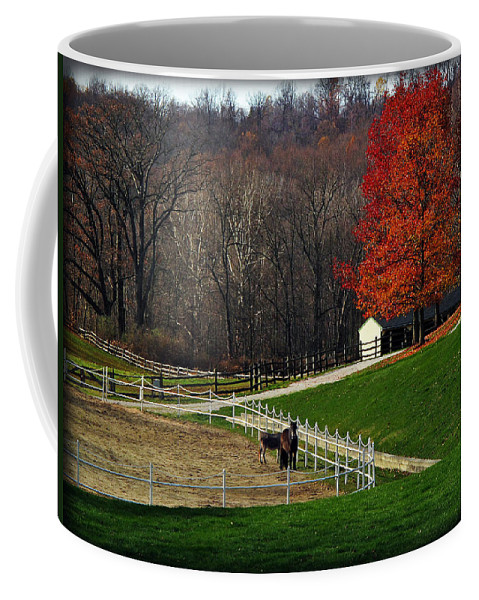 Autumn Coffee Mug featuring the photograph Horses In Autumn by Joan Minchak