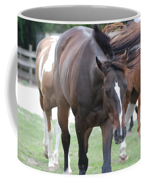 Horses Coffee Mug featuring the photograph Horses by Rob Hans