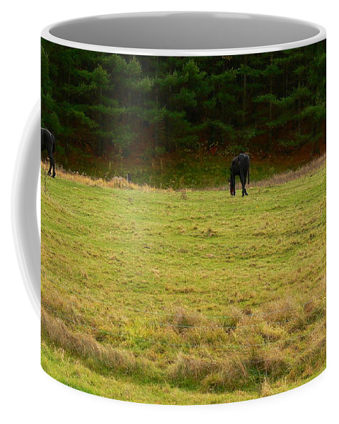 Nancie's Photography Coffee Mug featuring the photograph Horses Three by Nancie DeMellia